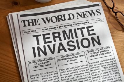 Termite Control in Houston - Protex Pest Control