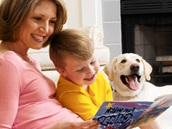 Pest Control - Houston Family Friendly Pest Control- Protex Pest Control